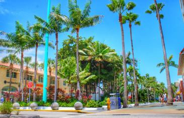 Miami (EUA) – 3 shoppings da cidade em 3 minutos – e algumas dicas de compras!