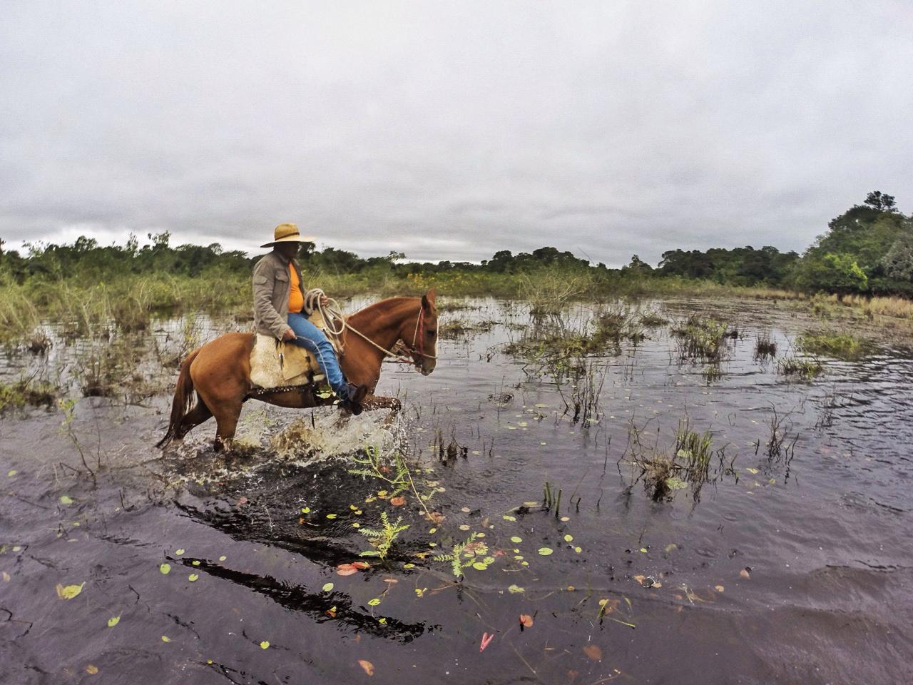 pantanal_1
