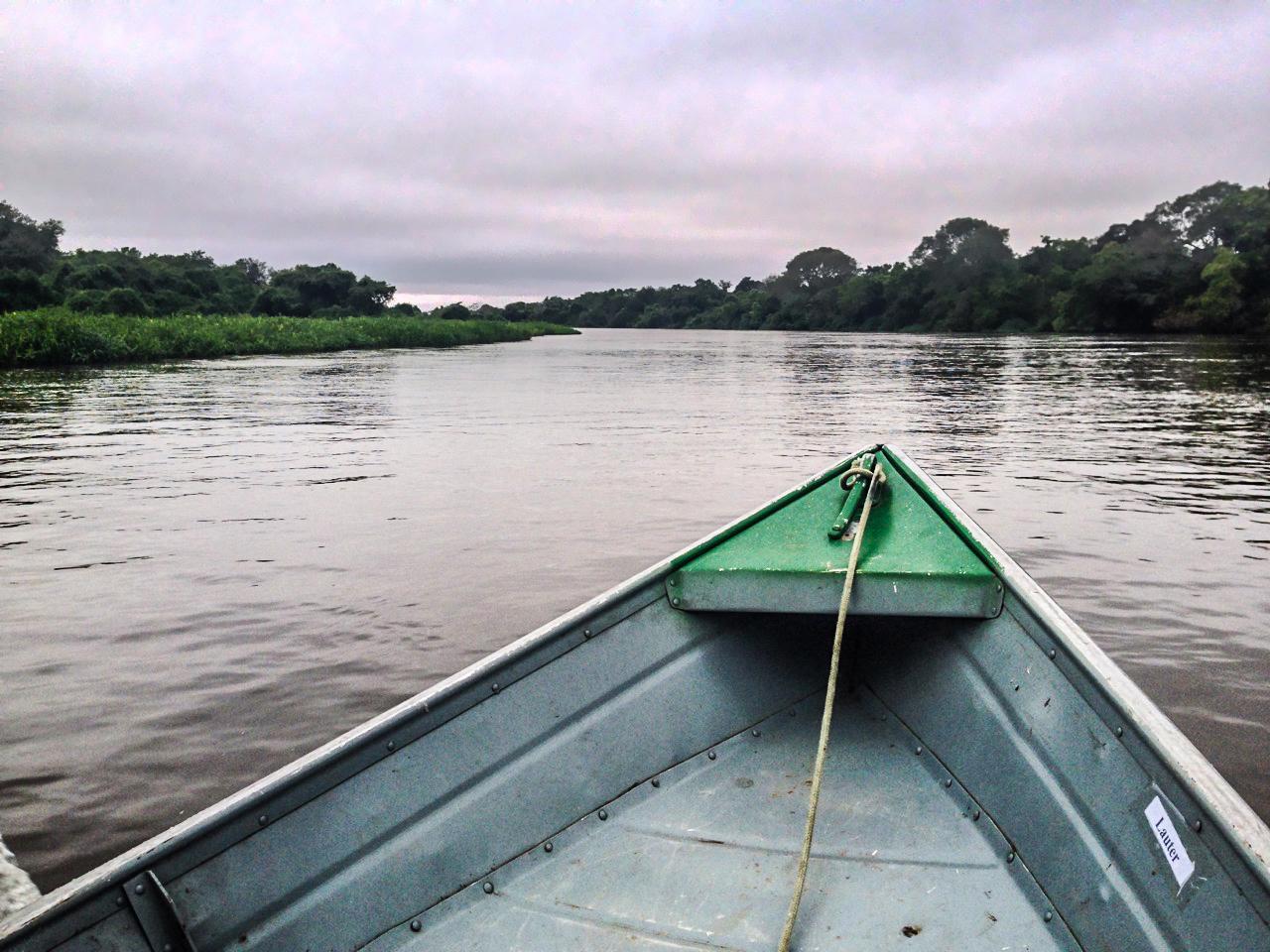 pantanal_7