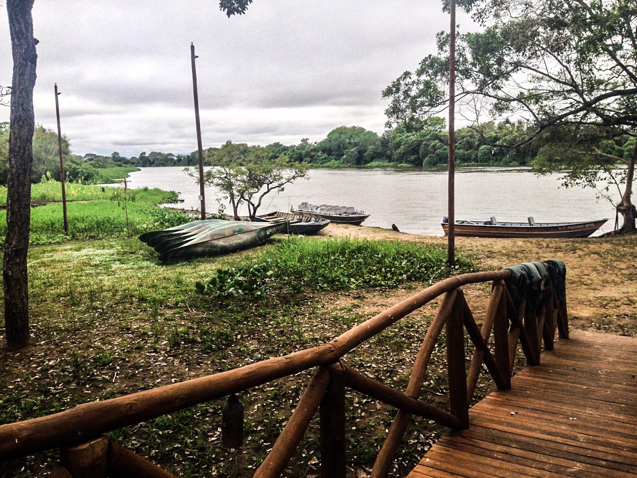 pantanal_9