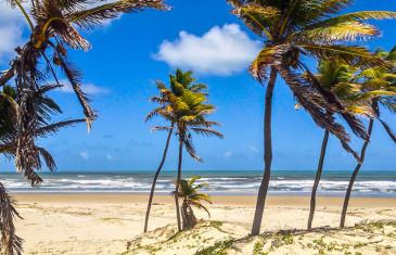 Imbassaí (Bahia) – Praia do Forte, Mangue Seco e Imbassaí: um roteiro pela Rota dos Coqueiros