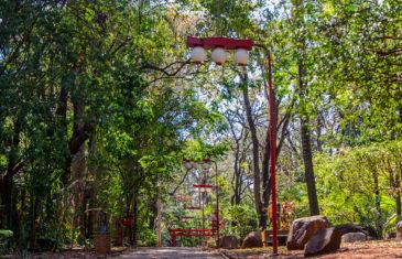 Ribeirão Preto (Brasil) – O que fazer em um final de semana